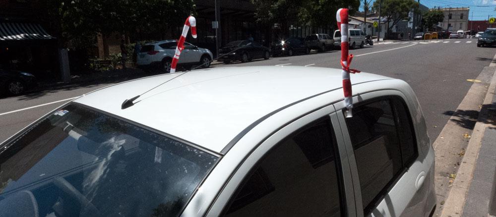 09b-car-deers-P1020831