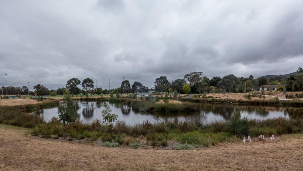 wetlands-P1030438