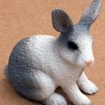 rabbitt01