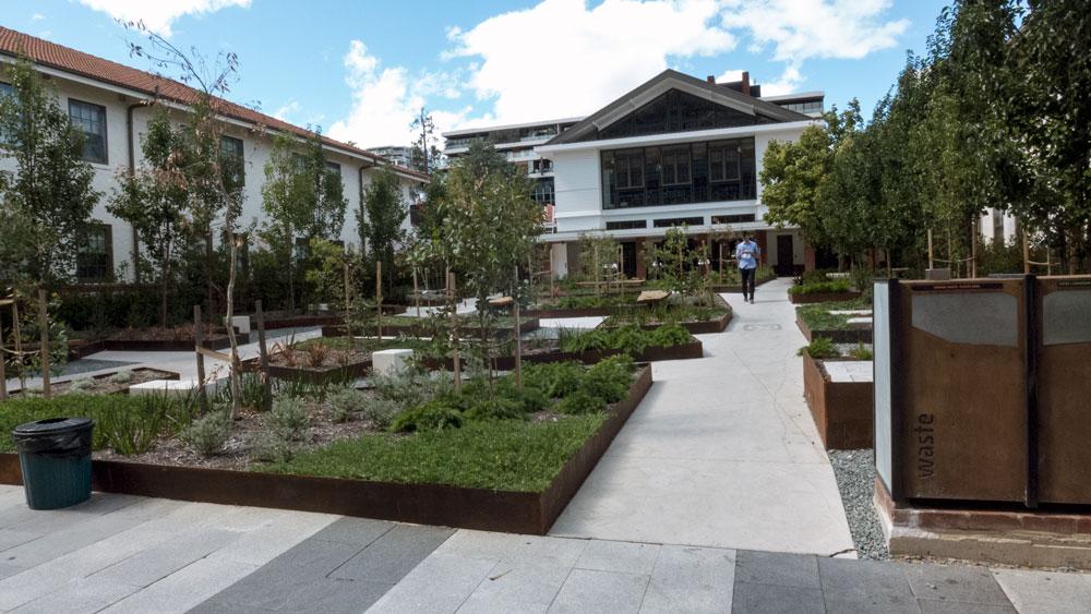garden-P1040104