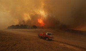 Bushfires in Wagga Wagga, New South Wales, Australia - 19 Jan 2014