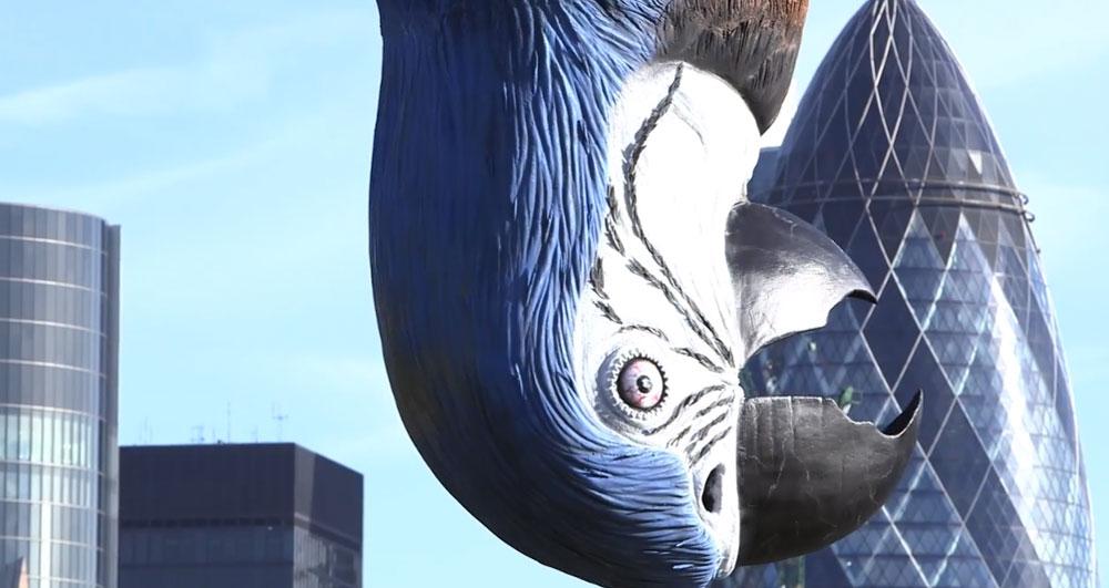 dead-blue-parrott