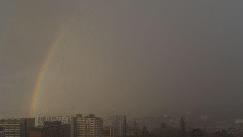 rainbow-P1180659