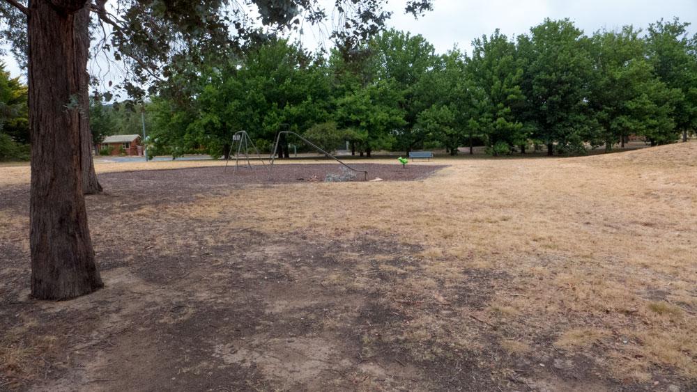 wetlands-P1030423