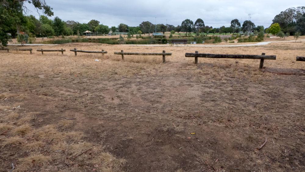 wetlands-P1030426