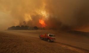 Bushfires in Wagga Wagga, New South Wales, Australia - 19 Jan 2014